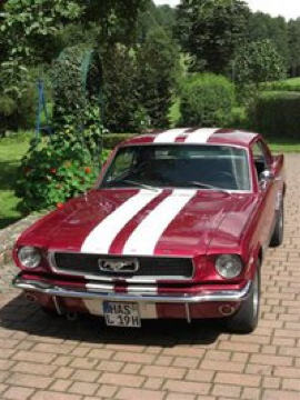 Interessanter Oldtimer, Ford Mustang, BJ 1966